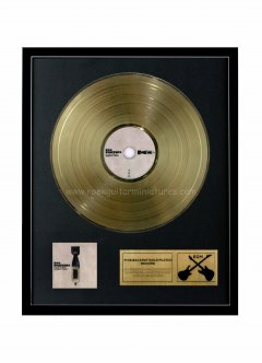 "Foo Fighters 12"" Gold Disks"