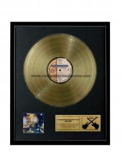 "Prince 12"" Gold Disks"